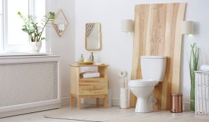 sewage pump for basement toilet